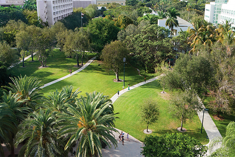 An aerial view of the University of Miami Coral Gables campus.